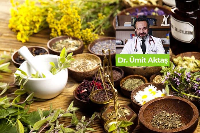 Kanser Araştırmalarının Merkezindeki Bitkiler! Hangi Kansere Hangi Bitki?