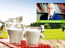 Süt Alerjendir! Çocuklarınıza Yoğurt, Kefir Verin Ama Süt İçirmeyin
