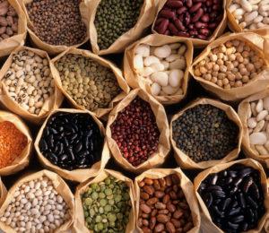 vejetaryen protein
