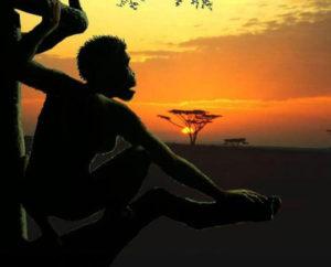 Savana hayatı - Homo Sapiens Ağaç Üstünd