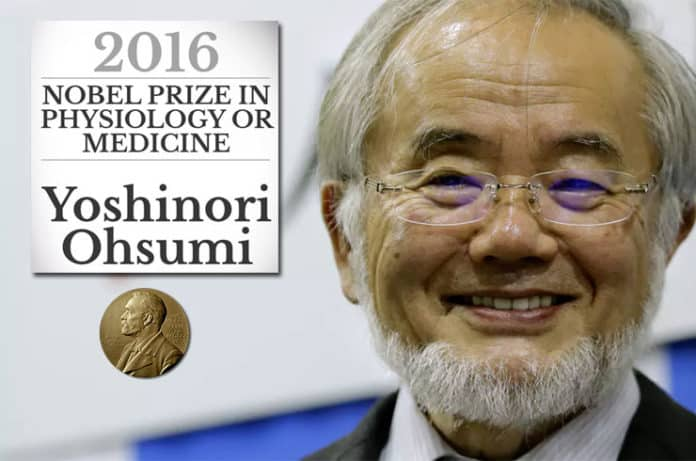 Açlık Orucu Üzerine Araştırma Nobel Kazandı: Aç Kal Uzun Yaşa
