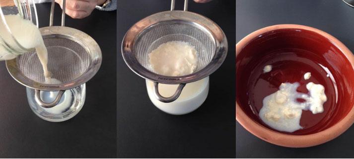 Yoğurt mayası hazırlama gün 3