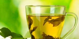 Yeşil Çay: Yeşil Çay Nasıl Hazırlanır? Faydaları ve Yan Etkileri Nelerdir?