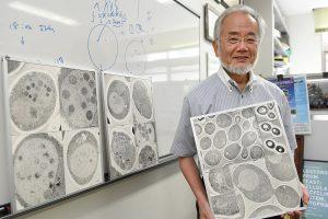 Açlık Orucu üzerine araştırma yapan Doktor Yoshinori Osumi