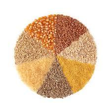 Gluten içeren tahıllar