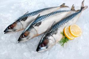 Gıda alerjisi balık