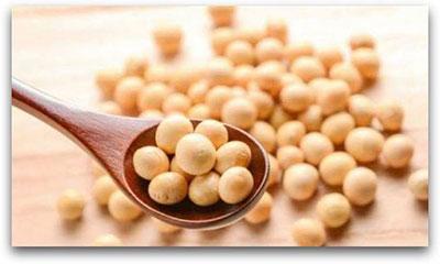 Gıda alerjisi soya