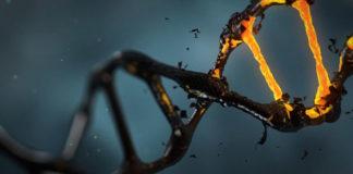 DNA hasarı ve kanser