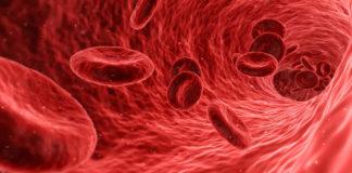 Hem Kanserin Nedeni Hem Tedaviye Giden Yol: Kanserde Kök Hücre