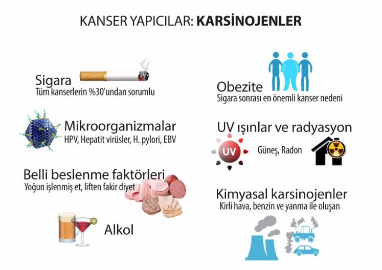 Kanser yapıcı karsinojenler