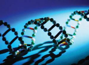 genetiik