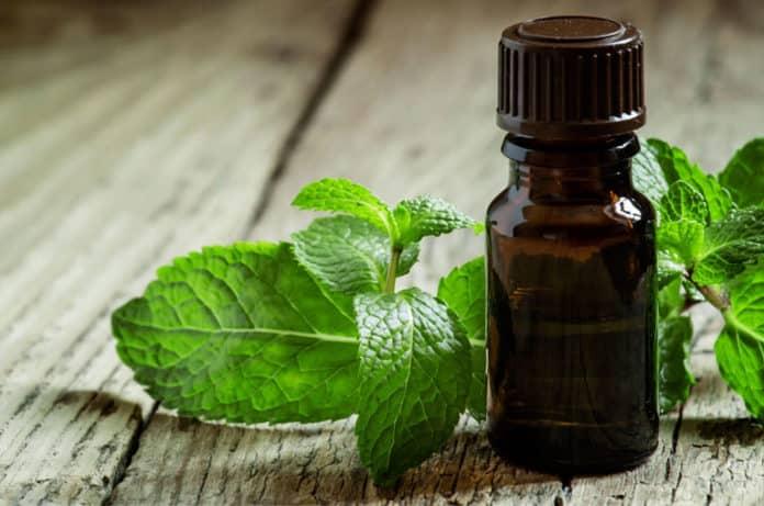 Nane Yağı: Nane Yağının Sağlık Faydaları ve 25 Kullanım Alanı