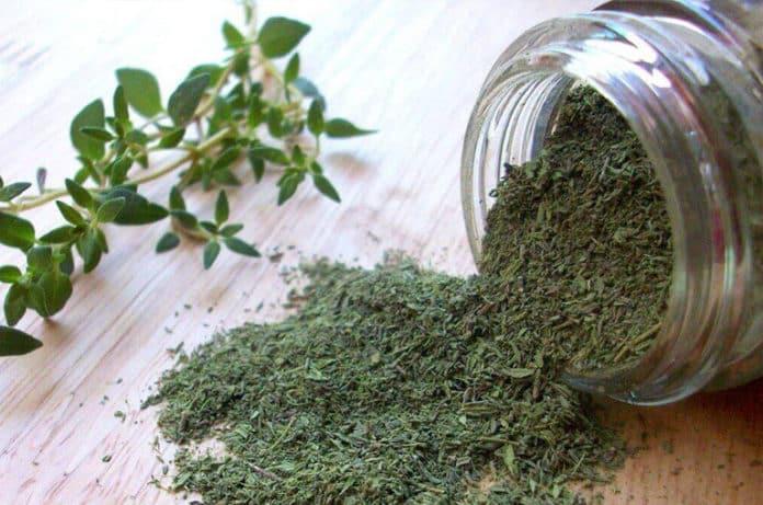 Kekik: Dertlere Deva Bitki, Kekik Yağı ve Kekik Suyunun Faydaları