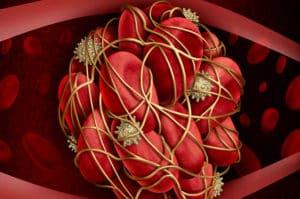 Kan Pıhtısı: Nedenleri, Belirtileri ve Doğal Tedavi Yöntemi