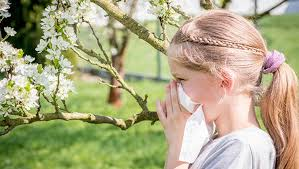 Alerji polen