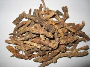 Katuka (Picrorhiza Kurroae)