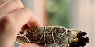 Ada Çayı Tütsüsü Havadaki Bakterilerin %94'ünü Öldürüyor!