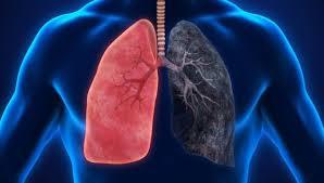 akciğer temizliği