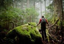 Doğa Yürüyüşü: Tek Başına Doğa Gezisi ve Kamp İçin Güvenlik