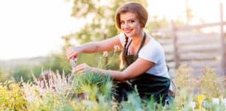 Şifalı Bitkiler: Bahçenizde Yetiştirebileceğiniz 10 Şifalı Bitki ve Faydaları
